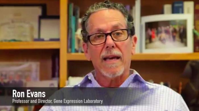 ron evans vitamina d cancer pancreatico