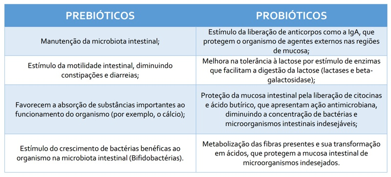 tabela-prebioticos-probioticos